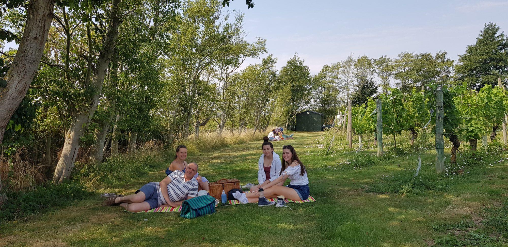 People enjoying a picnic at Warden Abbey Vineyard